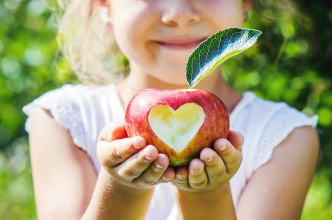 Barn holder eple