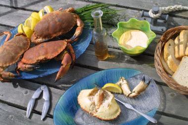 Krabbe, majones og loff på brygga. Foto.