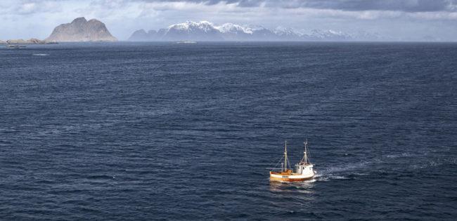 Fiskebåt ute på åpent vann