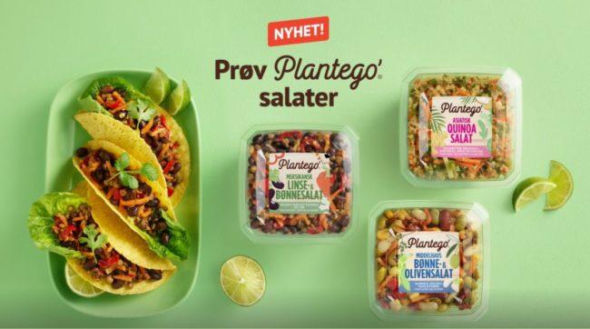 Plantego salater