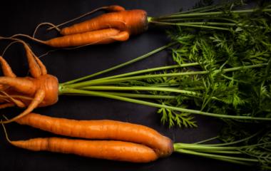 Snåle gulerøtter