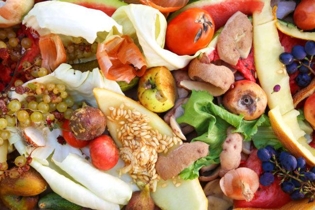 Matsøppel