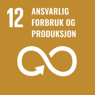 FNs bærekraftmål 12