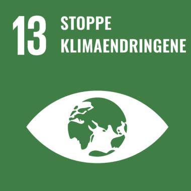 FNs bærekraftmål 13