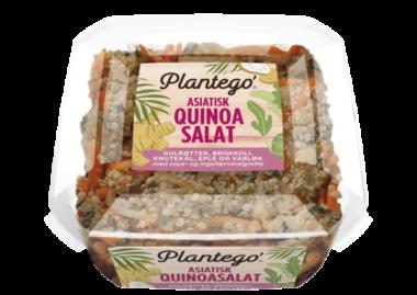 Plantego Quinoasalat