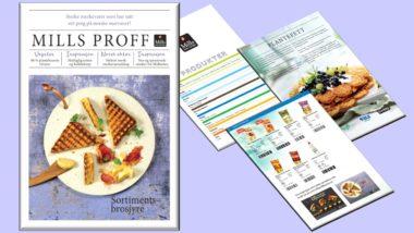 Mills Proff Partner Produktkatalogen illustrasjonsfoto