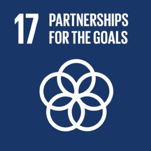 UN SDG 17