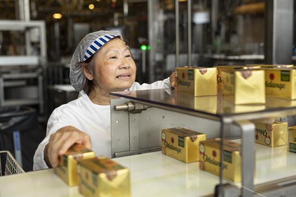 Factory Melange
